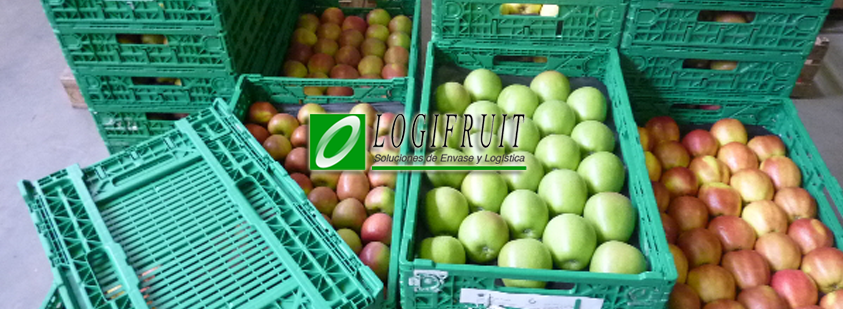 Palletizing automation for Logifruit packaging at Seville